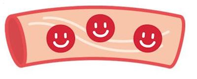 ぶろっこりーの効果:血管を柔らかくする